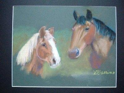 horse portrait, horse art, horses