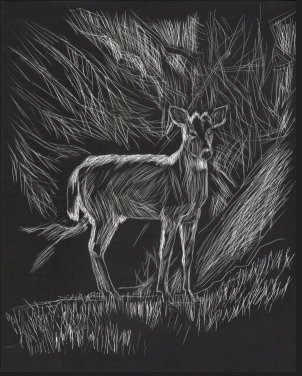 Deer scratch board